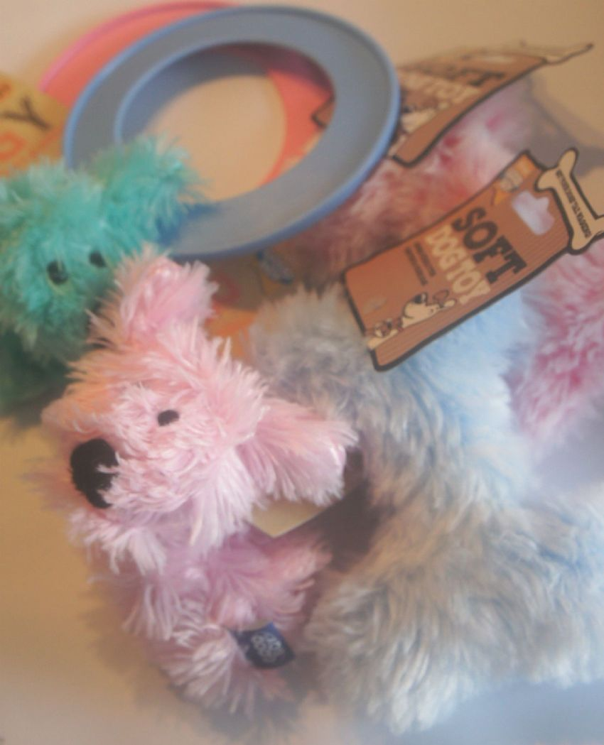 PUPPY TOY PACK TRIPLE PACK OF PUPPY TOYS RAGGY PUPPY, BONE AND MINI RING FLYER